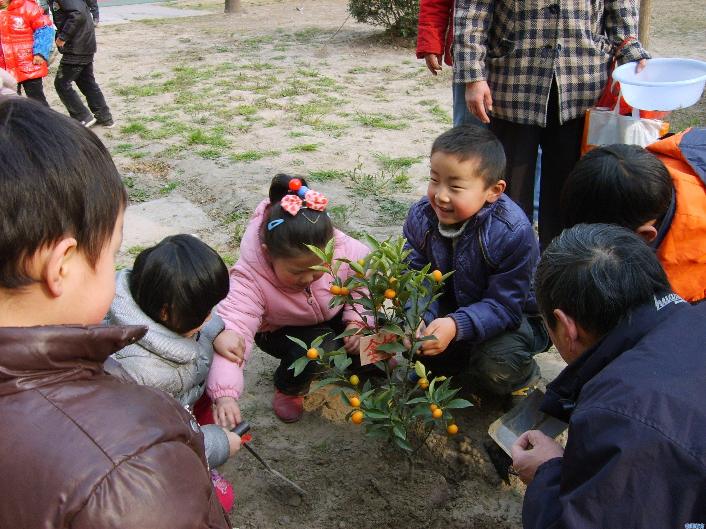 """易家桥幼儿园""""我和小树共成长""""亲子主题活动"""