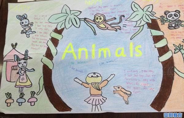 关于动物的英语手抄报;