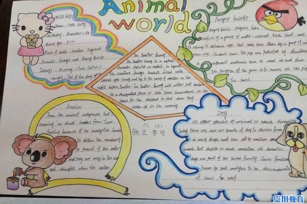再看六年级的大哥哥大姐姐们,亲手制作的动物主题手抄报,充满了动物